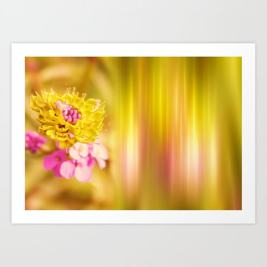 The Sound of Light and Color Art Print