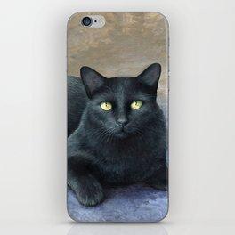 Cat 621 iPhone Skin
