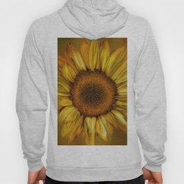Sunflower - Vintage Hoody