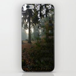 Divided In Fall (There Are No Picnics Here) iPhone Skin