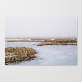 Fog over Potters Marsh Canvas Print