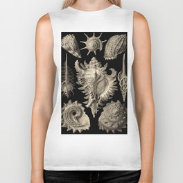 Ernst Haeckel Prosobranchia Sea Shells Biker Tank
