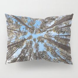 Yellowstone National Park - Lodgepole Forest Pillow Sham