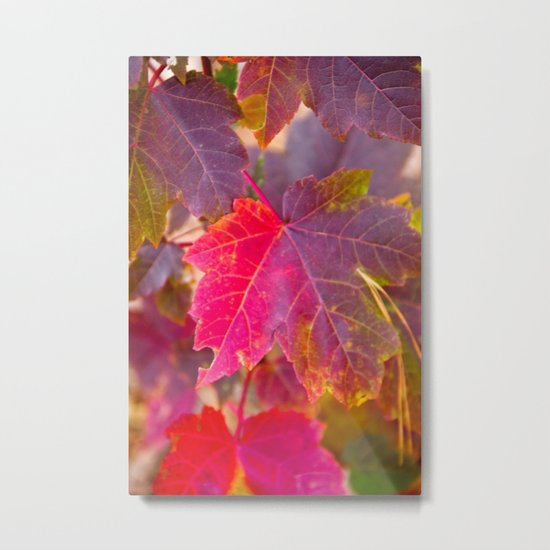 Fall Party Metal Print