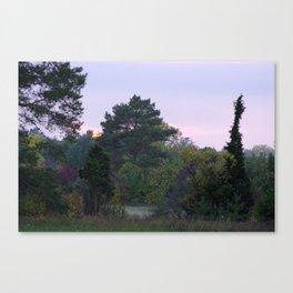 Violet Evening Canvas Print