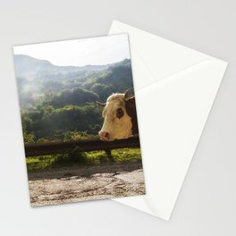 Landscape across border between Bosnia and Herzegovina and Montenegro. Stationery Cards