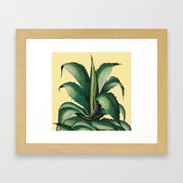 big catcus Framed Art Print