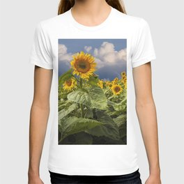 Blooming Sunflowers against a Cloudy Blue Sky T-shirt