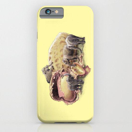 Elephant's Paradise (colour option) iPhone & iPod Case