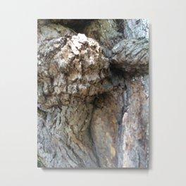 Intimate Tree #4 Metal Print