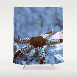 Starfish reaching out tentatively Shower Curtain