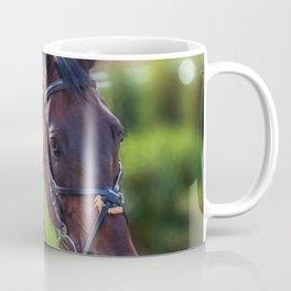 Horse Wall Art, Horse Portrait. Horse looking straight forward closeup. Coffee Mug