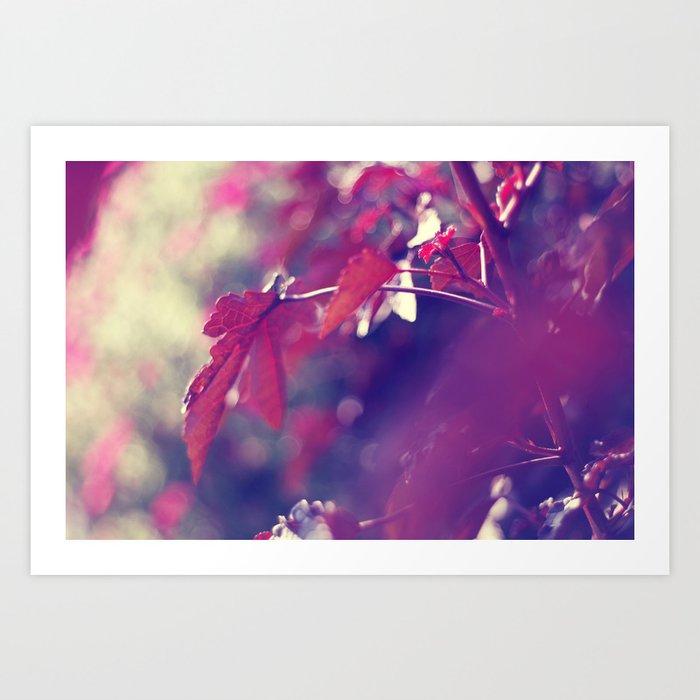 feeling like fall Art Print