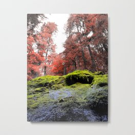 Rainbow Cavalcade, Oregon woods Metal Print