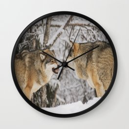 Wolves snarling snow winter forest wildlife Wall Clock