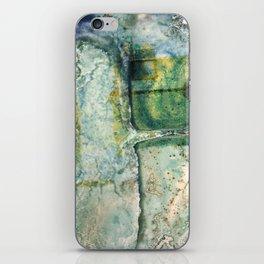 Water Damaged Photo No. 6 iPhone Skin