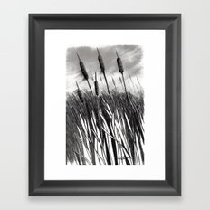 Cattail Field Framed Art Print