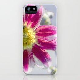 Delicious Dahlia iPhone Case