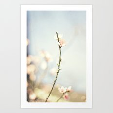 jutting bloom Art Print
