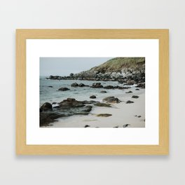 Honu // Sea Turtles on the Beach in Paia, Maui Framed Art Print