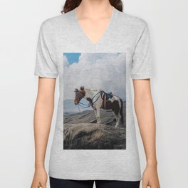 The Horse and the Volcano Unisex V-Neck