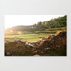 Over the wall Canvas Print