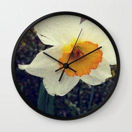 Daffy Wall Clock