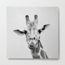 Giraffe 2 - Black & White Metal Print