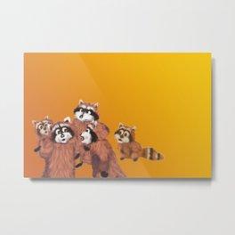 Raccoon Series: Discussion Metal Print