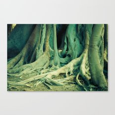 Salva Mea Canvas Print