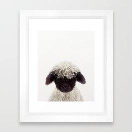 Baby Lamb, Baby Animals Art Print By Synplus Framed Art Print