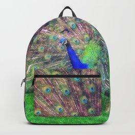 A Royal Walks Backpack