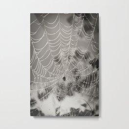 Morning Web Metal Print