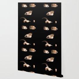 Skull Cabinet Wallpaper