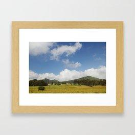 Waimea. Framed Art Print
