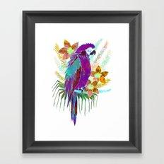 Parrot Elua  - Style A Framed Art Print