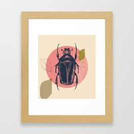 Blue Beetle Framed Art Print