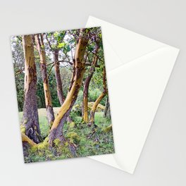 MAGIC MADRONA FOREST Stationery Cards