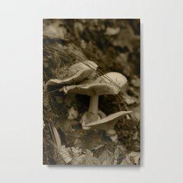 Tyrolean forest mushrooms, sepia photograph 2013 Metal Print