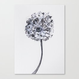 Dandelion illustration, black white watercolor, nature, botanical Canvas Print