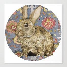 Round Rabbit Canvas Print