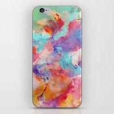 078 iPhone & iPod Skin