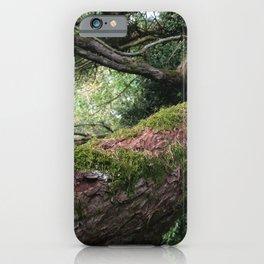 Enchanted Woodland Tree Branch UK English Countryside iPhone Case
