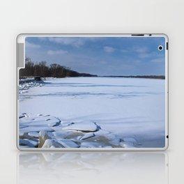 Frozen Fever Laptop & iPad Skin