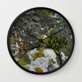 Coastal Rocks With Lichens and Ferns Wall Clock