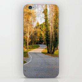 Strada del Monte Tomba iPhone Skin