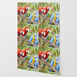 Curious macaws Wallpaper