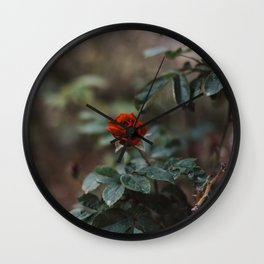 Rose in Kibbutz, Israel Wall Clock