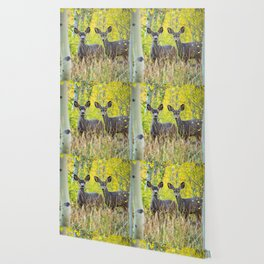 Double Take - Pair of Young Mule Deer Hiding in Autumn Aspens Wallpaper