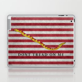 First Navy Jack flag of the USA, vintage Laptop & iPad Skin